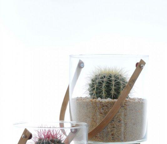 Seau Cactus Luc Gaignard